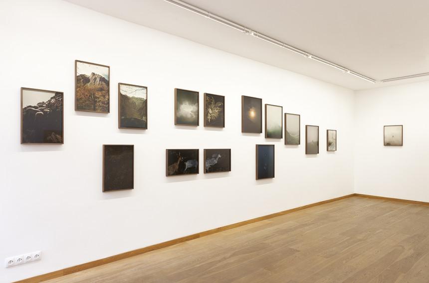 Ausstellungsansicht1_Pyrénées 1.jpg