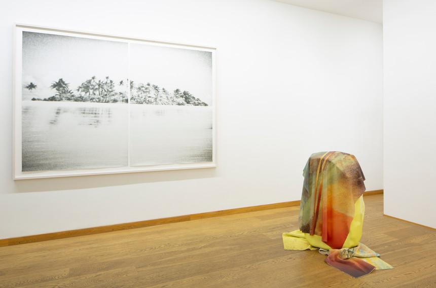 Exhibition view: VARIOUS OTHERS 2020 Jan Paul Evers & Anouk Kruithof