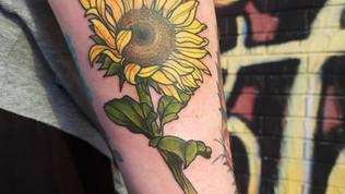 marg sunflower.jpg