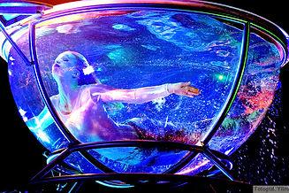 Waterbowl.jpg