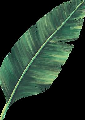 Leaf3-(2).png