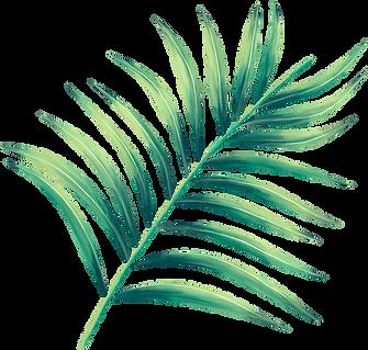 Leaf2-(2).png