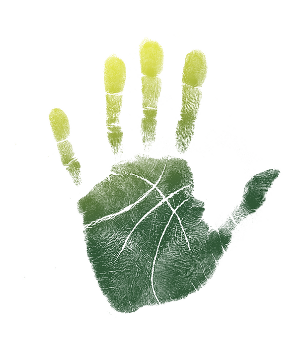 Basketball Handprint Seattle Storm.png