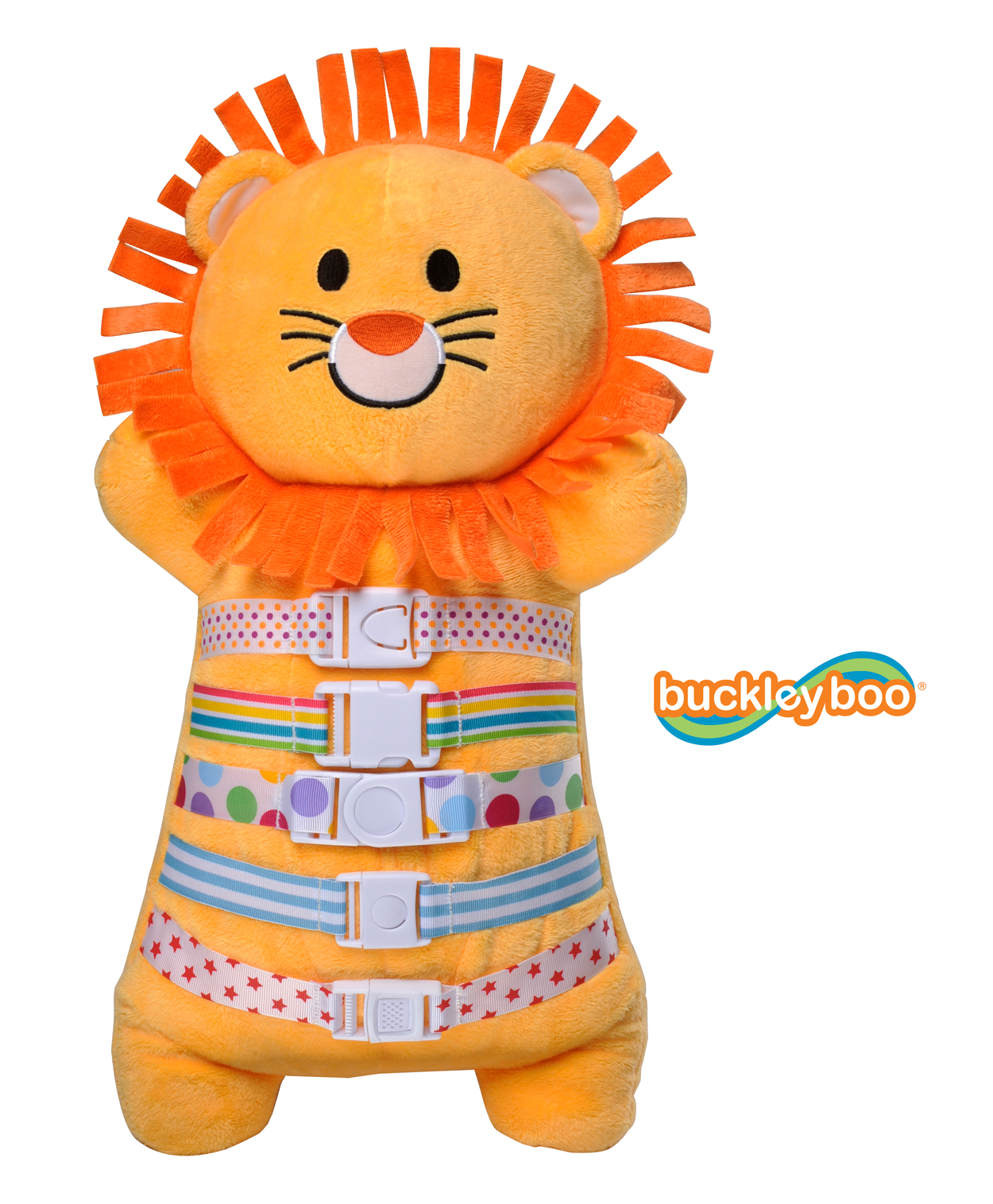 Lion_18_nobgrd_300