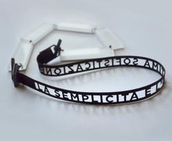 WebsiteImage ribbon