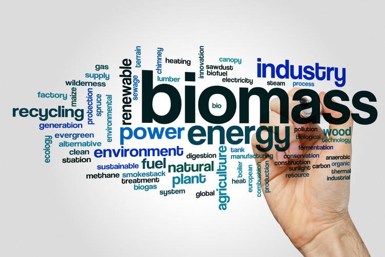 Biomass word cloud concept on grey backg