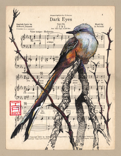 thorn-bird-tail-music-page.jpg