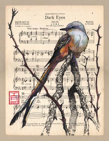 thorn-bird-tail-music-page.jpg