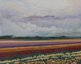Rainy Day on the Tulip Field