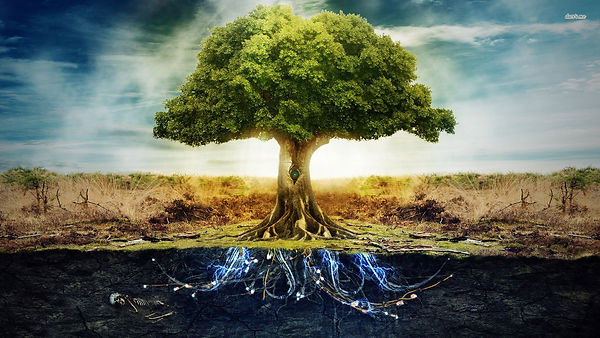 Gnosis Tree of Life