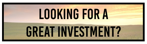 LookingToInvest.png