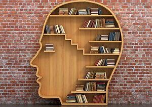Cool Book Shelf