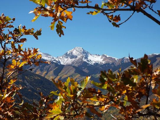 A Fall View of Mt. Sneffels