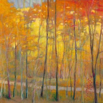 Yellows at Creek Left