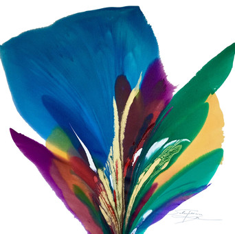 Blue Rio De Colores - 5