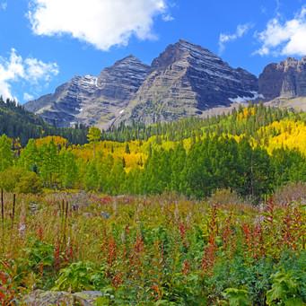 Autumn Mountain Field