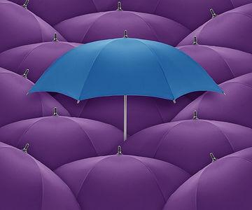 Business Insurance Clients