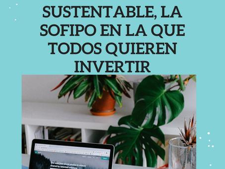 Financiera Sustentable, Mi experiencia.