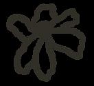 KS-FLOR-Logo.png
