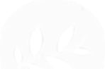 Prrgram-icone-blanc.png