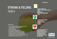 Striking and Fielding Cover.PNG