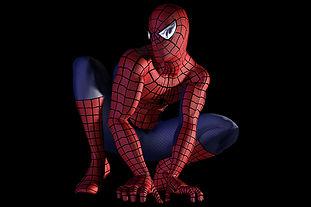 display-homem-aranha.jpg
