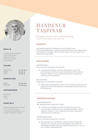 01_Handenur Taşpınar CV.png