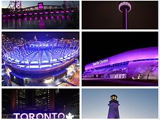 purple lights.PNG
