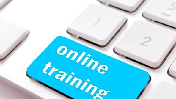 EMR Hourly Training