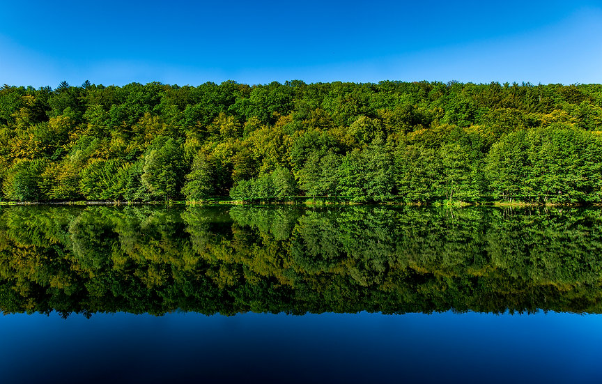 Symmetrische Landschaft I
