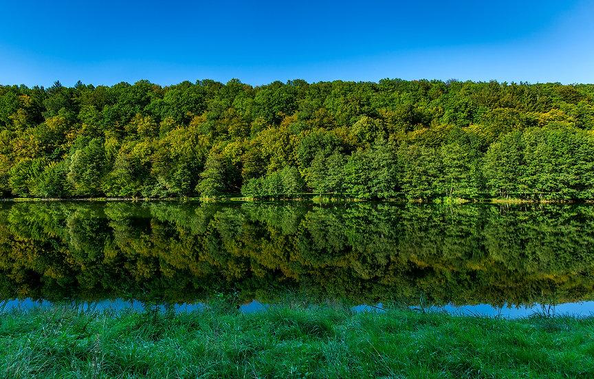 Symmetrische Landschaft II