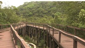 Parque Ecológico Imigrantes é inaugurado em São Bernardo  veja como agendar visitas.