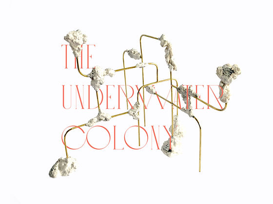 The Underwater Colony by Nicole Vindel