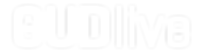 gudlive logo new-01_white-01.png