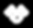 APAC_PT_SITE_ICONES METODOLOGIA_72Dpi-07