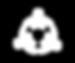 APAC_PT_SITE_ICONES METODOLOGIA_72Dpi-05