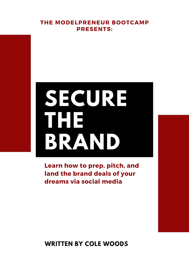 SECURE THE BRAND E-BOOK (2).png