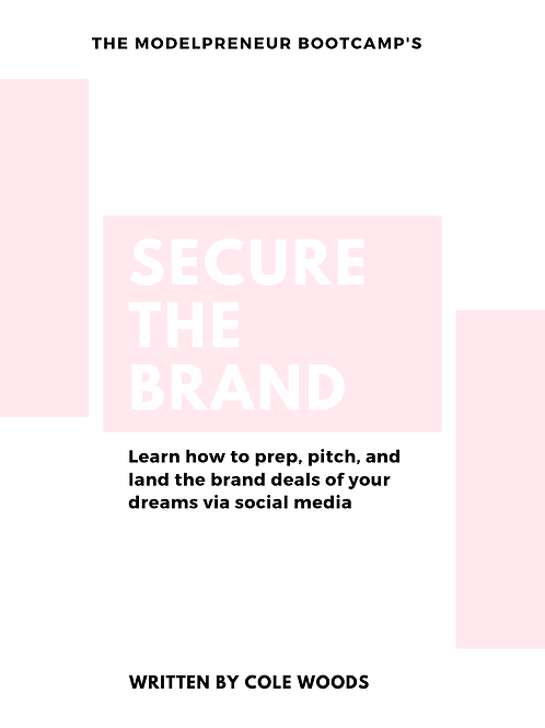 Secure The Brand E-Book