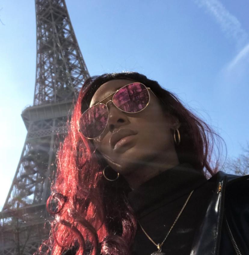 Black Panther in Paris