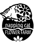 napping%20cat%20logo-webpage_edited.png