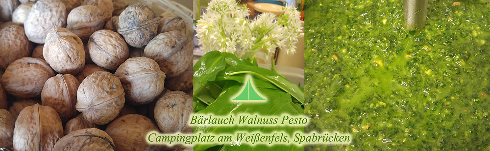 Bärlauch Walnuss Pesto