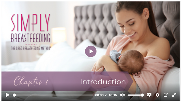 preview-full-Simply Breastfeeding image