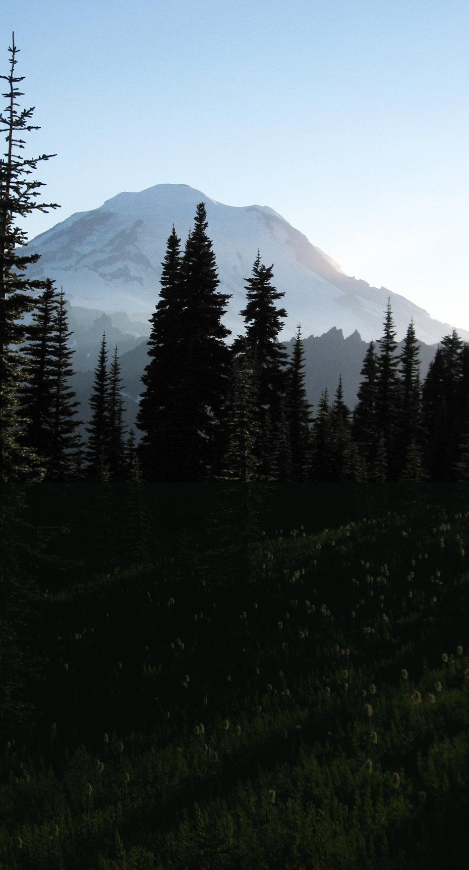 Mt. Rainier from Naches Peak faded.jpg