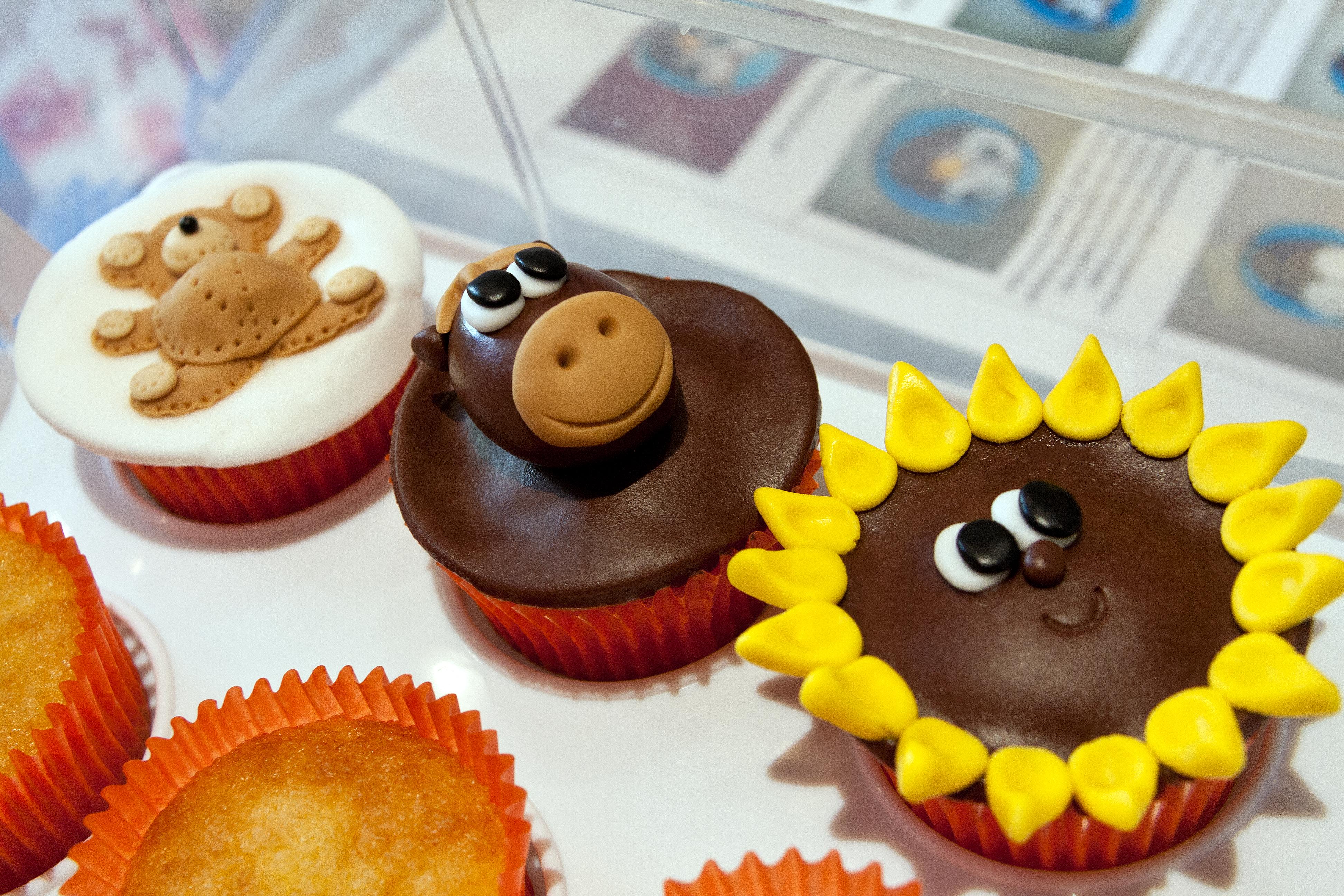 Teddy, Horse & Sunflower Cupcakes
