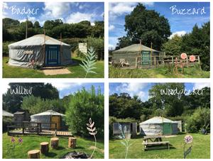 Blackdown Yurts in Devon