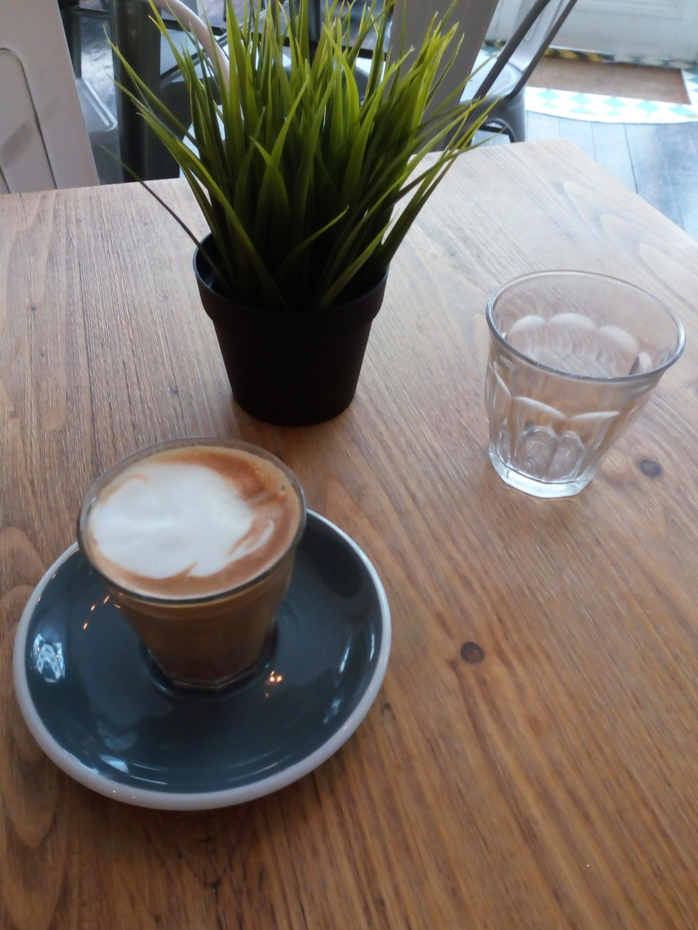Ethical coffee & a plastic plant