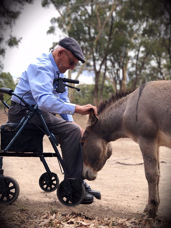 A beautiful moment captured, when a 94 year old gentleman, receives the respect from Tippy, the pack leader.