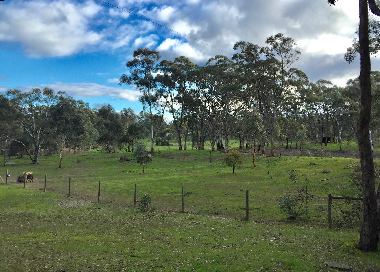 Farmstay country Victoria