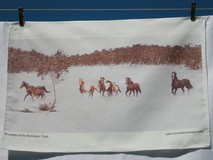 Brumbies of the Barrington Tops T.Towel.