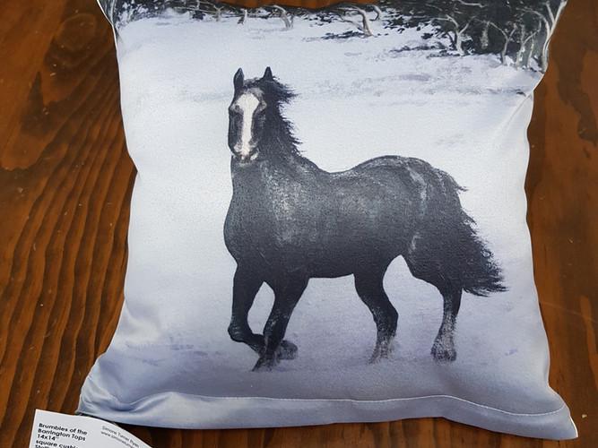 Stallion cushion